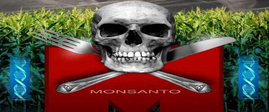 Monsanto o alimentos envenenados.