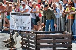 Skipton Sheep Day