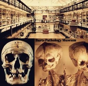 Death Drawing - Art Macabre - Barts Pathology Museum (Photo: Barts Pathology Museum)