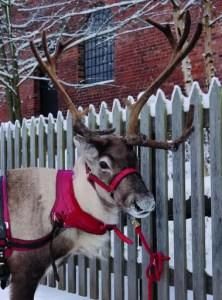 Victorian Christmas - Blists Hill Victorian Town - Ironbridge