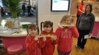 At-Bristol - Spring Alive - February half term events 2014