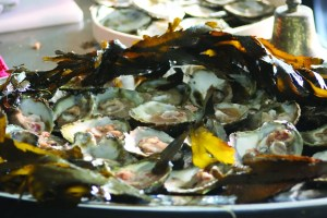 Falmouth Oyster Festival 2016 - Cornwall