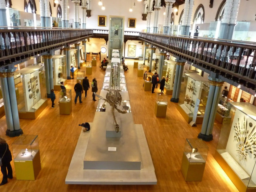 Contrary Life - Glasgow city guide - Hunterian Museum