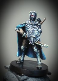 A painted Dark Elf for the Board game BloodRage