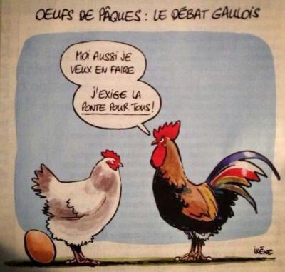 poule_et_ponte_lol___