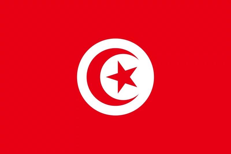 Drapeau Tunisie  (image libre de droits)