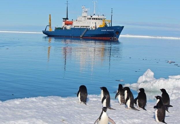 Expédition Antarctique Australienne 1