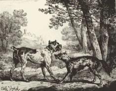 Le Loup et le Chien, illustration par Carle Vernet de la fable de La Fontaine (Image libre de droits)