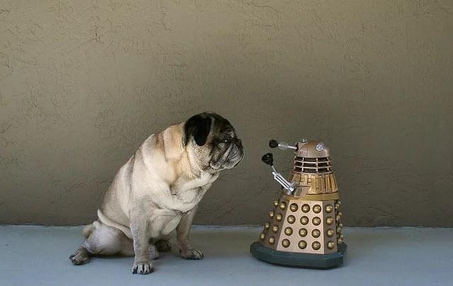 Dalek credits Zoomar (licence creative commons)