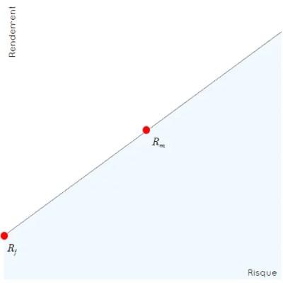 graphe risque rendement