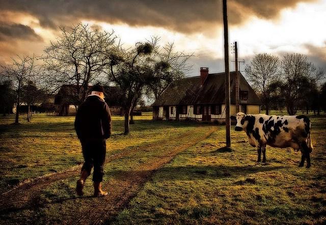 Retour à la ferme-Osbern(CC BY-NC 2.0)