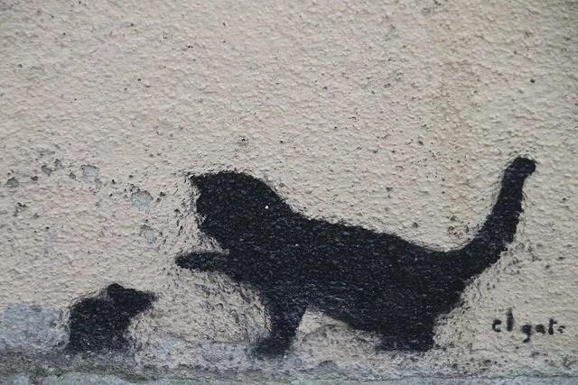 Pop H-Le chat et la souris-Creative common