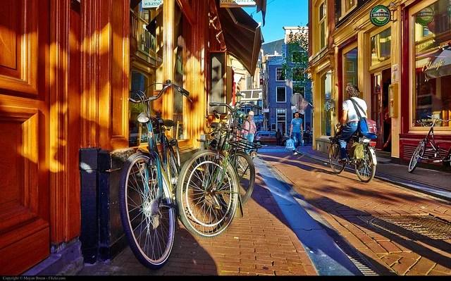 Moyan Brenn Amsterdam(CC BY 2.0)