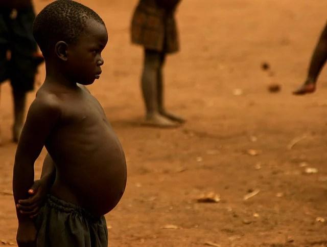 Autoriser le riz doré aiderait à lutter contre la malnutrition