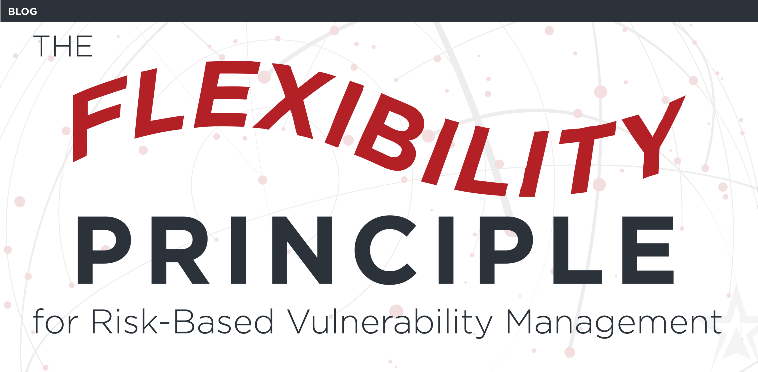 The Flexibility Principle For Vulnerability Management