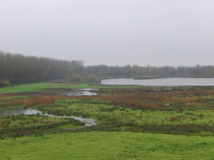 Kingfishers Bridge Wetlands Project