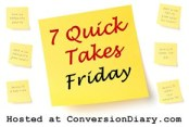 7 quick takes sm1 Your 7 Quick Takes Toolkit!