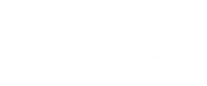 conversionowlogo-whitemarketing