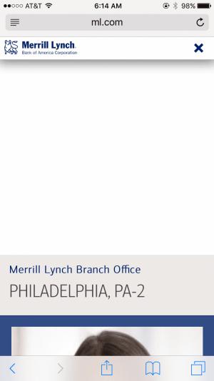 merrill lynch error
