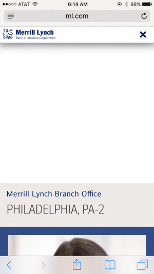 merrill lynch error