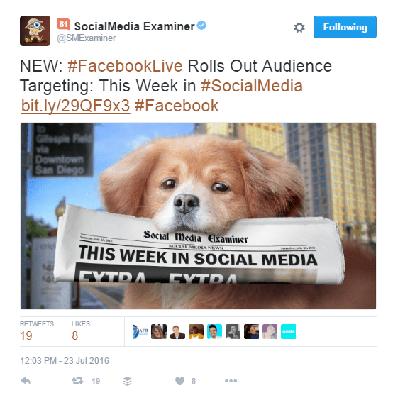 social_media_examiner_is_doing_it_wrong