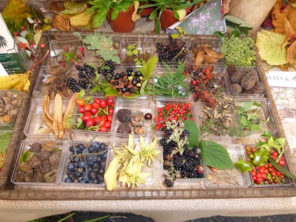 Hedgerow harvest from Pensychnant at Conwy Feast.