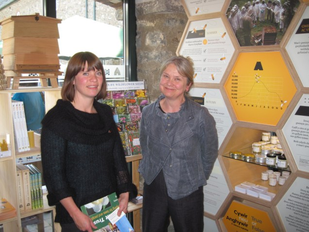 Dr. Nicola Bradbear, Bees for Development at Bees Wales