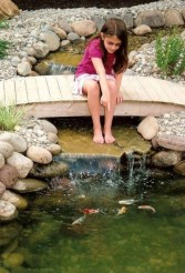 Modern Diy Garden Pond Waterfall Ideas For Backyard 06