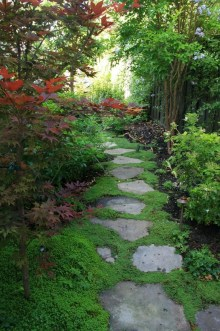 Unusual Garden Path Design Ideas On A Budget To Try Now 11