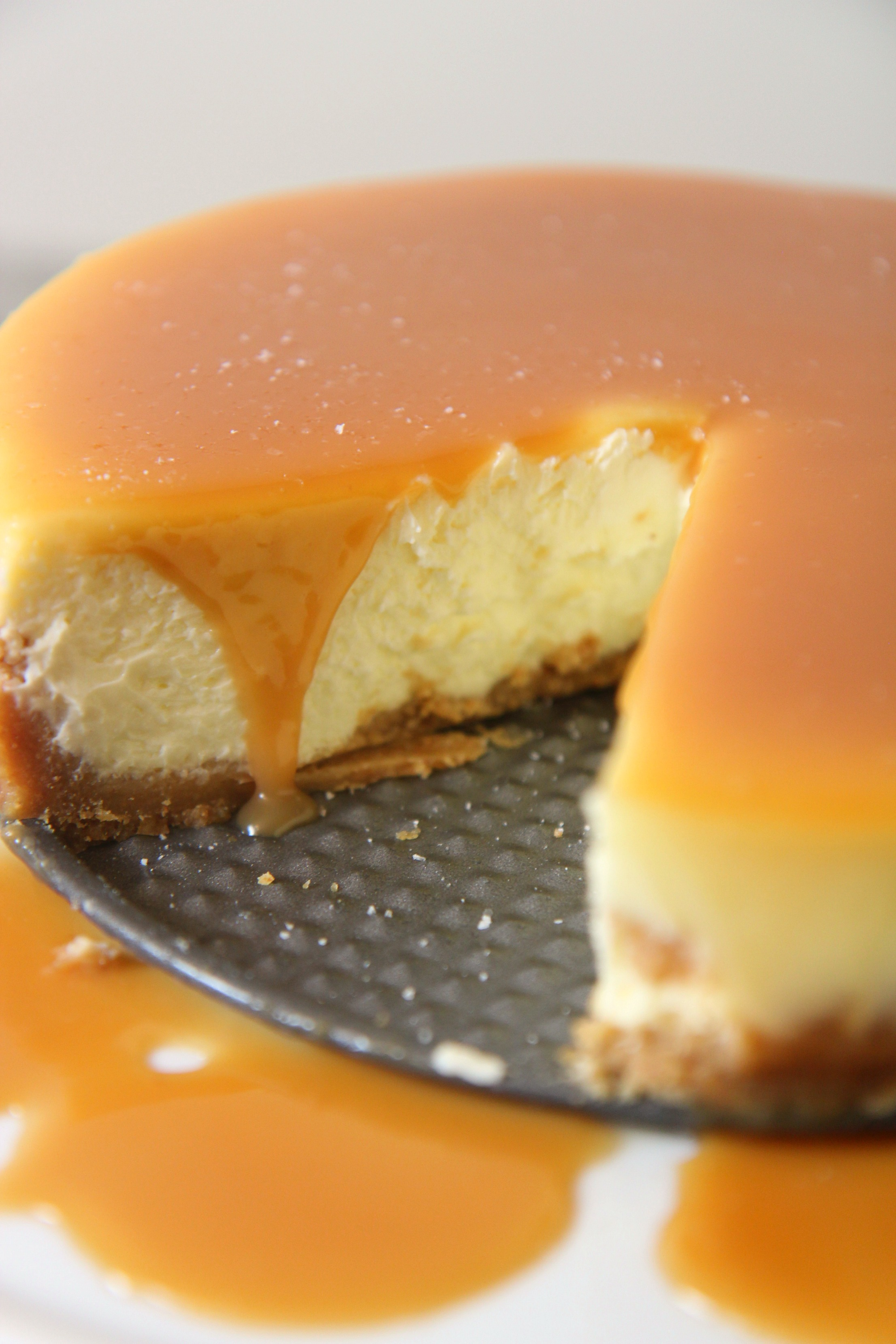 salted caramel cheesecake on a springform pan