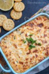 crab dip with green onions and ritz crackers.
