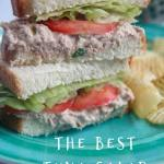tuna salad sandwiches with lettuce and tomato on a green plate