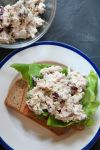 chicken salad sandwich with lettuce on a plate with a bowl of chicken salad in the background