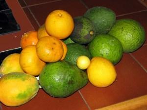 Morning's Fruit