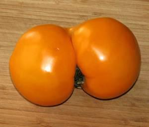 Kardashian Tomato