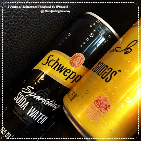 schweppes-thai-history-tonic-soft-drink-soda-water-dry-ginger-ale-review-coke-2