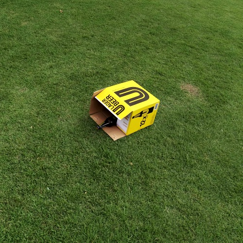 ubeer-u-lager-beer-singha-new-delivery-review-price-fight-chang-leo-soda-low-cost-grass