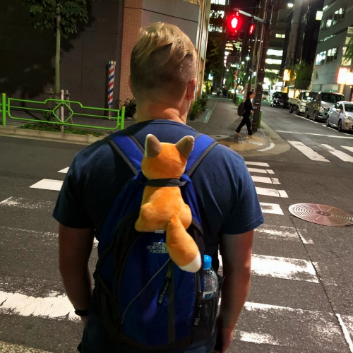 shiba-inu-fox-cute-dog-backpacker-tokyo-japan-only-farang-night-iphone-8-plus