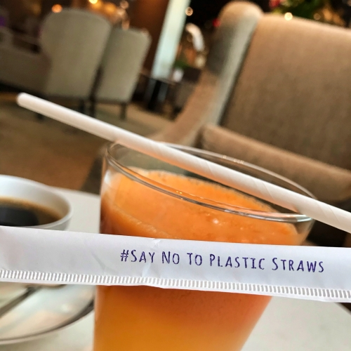 tg-thai-airways-first-class-review-747-tokyo-japan-blogger-sponsor-tea-royal-orchid-paper-straw
