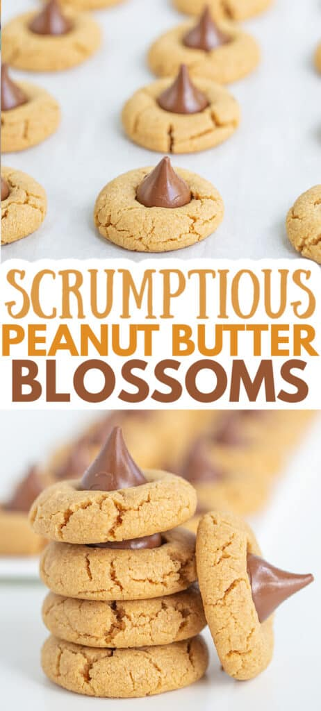 pinterest collage of peanut butter blossoms with text in the center