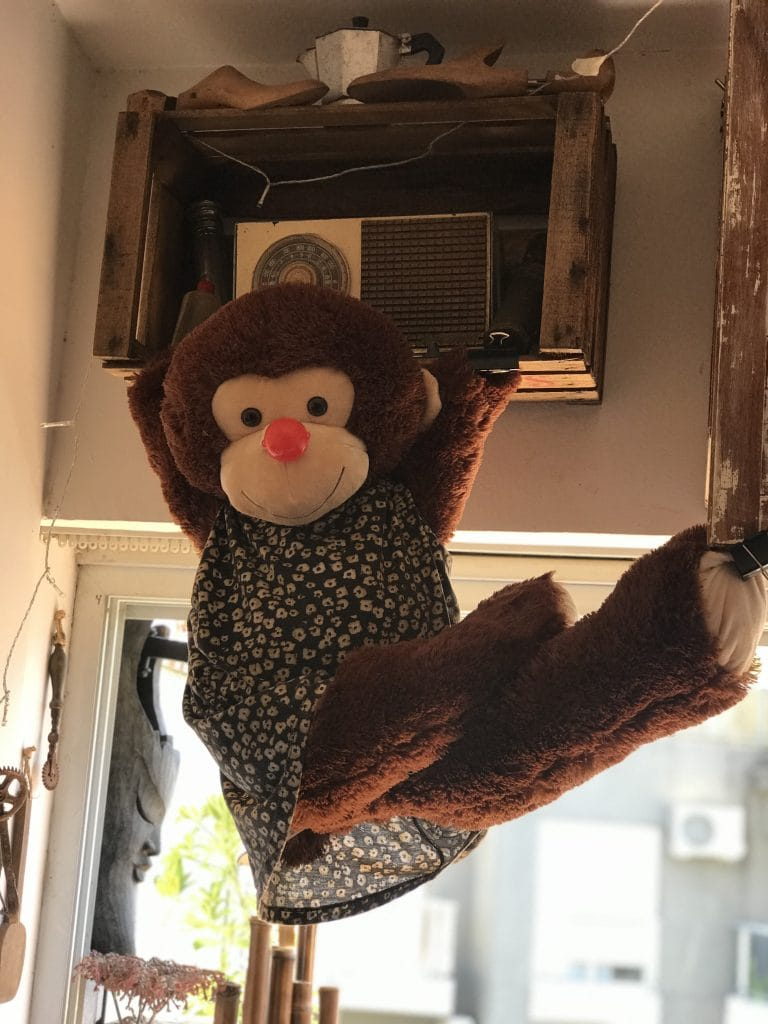 Mono sobrenombre con sentencia
