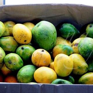 8 Eggless Mango Recipes to use up Ripe Mangoes