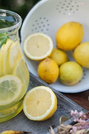 Zitronen Rosmarin Bowle_6963