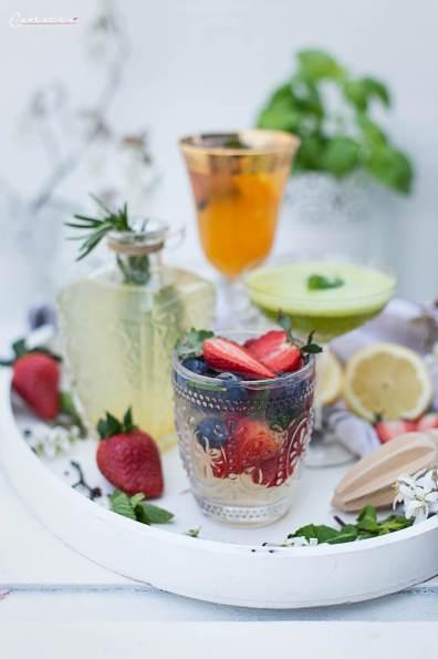 alkoholfreier Gin_1646