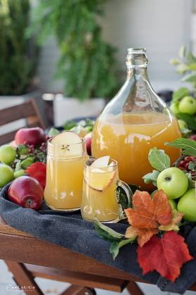 Apfelsaft selber machen_7982