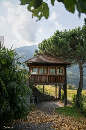Südtirol Loaker_1498