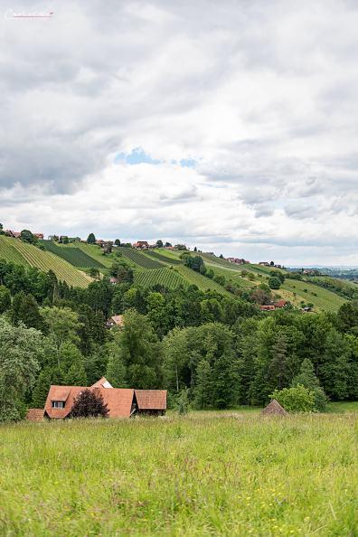 Steiermark Hiden_5327