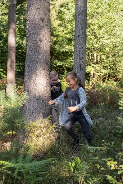 Herbstpicknick im Wald_5081
