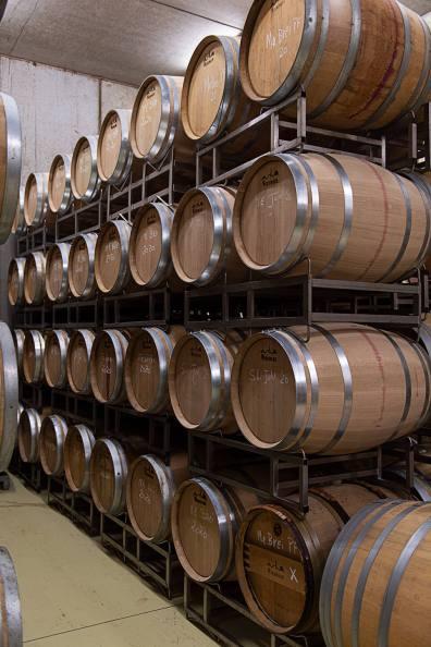 Österreich Wein Wieninger_2034