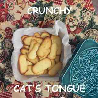 best cat's tongue cookies